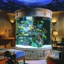 Морской аквариум в колонне