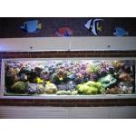 Морской аквариум в стене