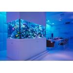 Морской аквариум-ширма