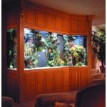 Морской аквариум-шкаф