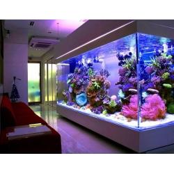 Панорамный морской аквариум