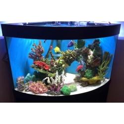Угловой морской аквариум